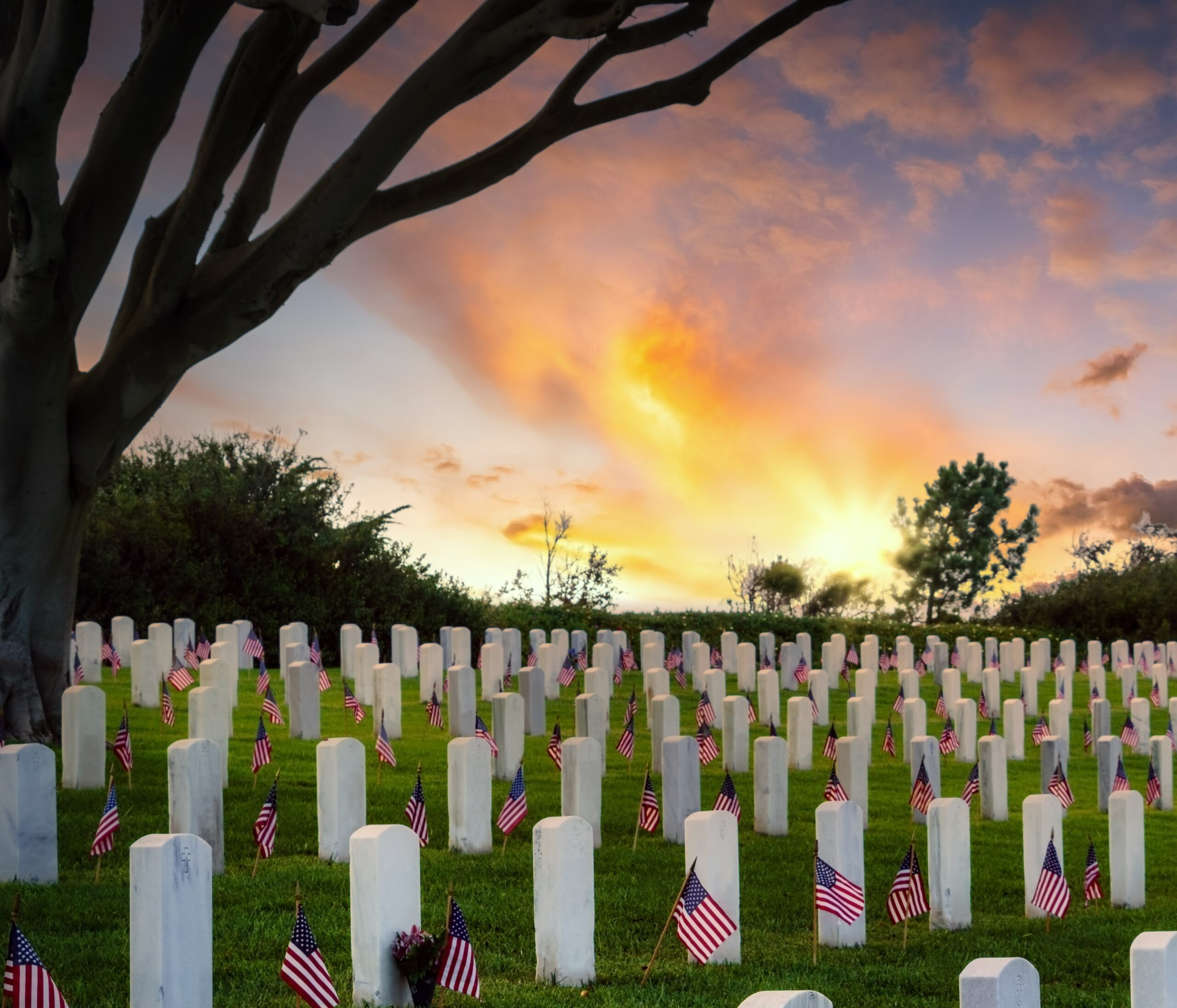 Memorial Day Tribute, Thoughts and Tips